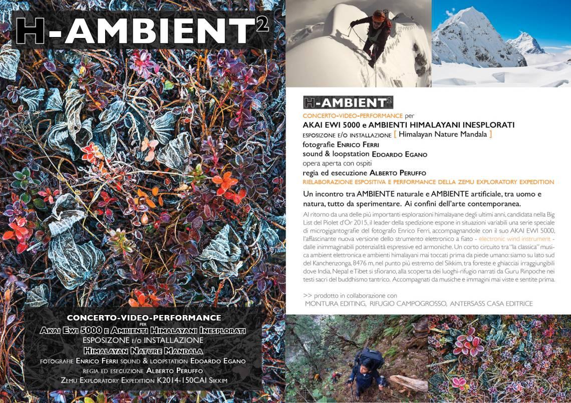h-ambient_leaflet_low