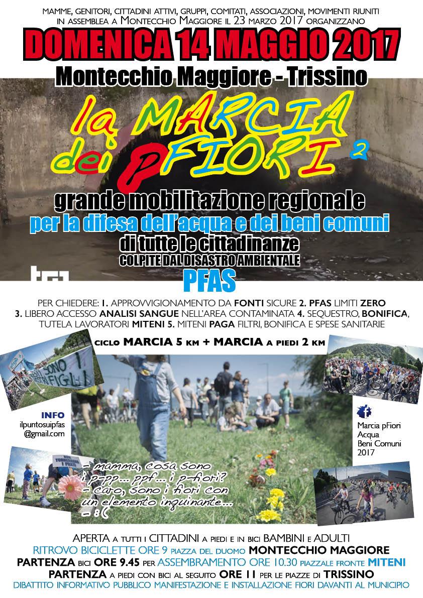 pfiori2017_acqua_beni_comuni_manifesto_72dpi