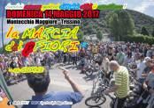 leaflet pfiori 2017 lancio 3