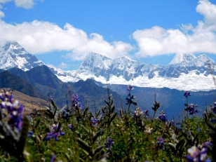 Fiori e Cordillera, verso nord. Dietro le nubi svetta l'Alpamayo