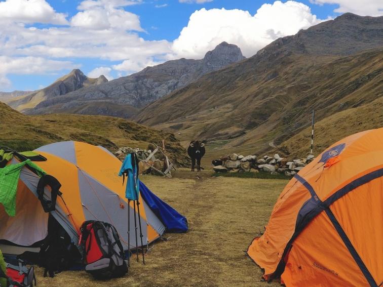 Campo Carhuacocha